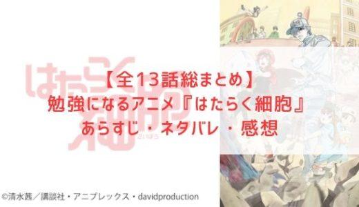 【全13話総まとめ】アニメ『はたらく細胞』のあらすじ・ネタバレ・感想
