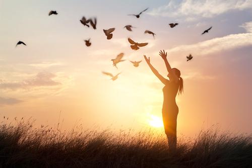 【結論】自己肯定感を上げる方法は『感謝』です【最強】
